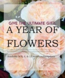 Flowers for a Year Flower Subscription