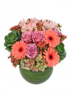 Forever More Arrangement in Somerville, NJ | FLOWERS BY HEAVEN SCENT LLC