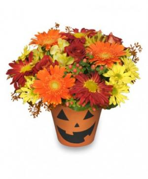 Bloomin' Jack-O-Lantern Halloween Flowers in Flint, MI | HOWELLS CATHY & CAROL'S FLOWERS & GIFTS