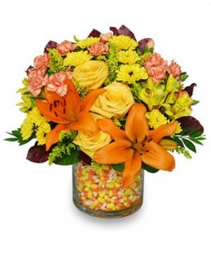 Candy Corn Halloween Bouquet in Independence, MO | HEAVENLY SCENT FLORAL BOUTIQUE