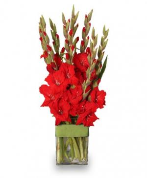 Glad You're My Dad Gladiolus Vase in Richland, WA | ARLENE'S FLOWERS AND GIFTS