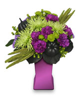 HOCUS POCUS Halloween Arrangement in Norfolk, VA | NORFOLK WHOLESALE FLORAL