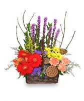 OUT OF THE WOODS Flower Basket Best Seller in Santa Barbara, CA | ALPHA FLORAL