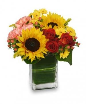 Season For Sunflowers Floral Arrangement in Sallisaw, OK | Violet's Flowers & Gifts