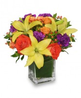 SHARE A LITTLE SUNSHINE Arrangement in Cary, IL | PERIWINKLE FLORIST