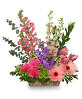 SPRING RETURNS! Floral Arrangement in Bath, NY | VAN SCOTER FLORISTS