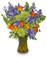 FLORAL STUNNER Bouquet of Flowers in Davis, CA | STRELITZIA FLOWER CO.