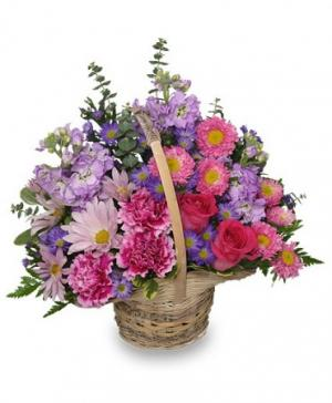 Sweetly Spring Basket Flower Arrangement in Worcester, MA | LADYBUG/GEORGE'S FLOWER SHOP