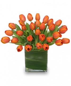 ORANGE OASIS Bouquet of Tulips in Burbank, CA | LA BELLA FLOWER & GIFT SHOP