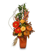 TOASTED PUMPKIN Fall Flowers in Burkburnett, TX | BOOMTOWN FLORAL SCENTER