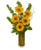 TODAY'S YOUR DAY Bouquet in Essex Junction, VT | CHANTILLY ROSE FLORIST