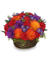 YOU MAKE LIFE GRAND Basket Arrangement in York, NE | THE FLOWER BOX