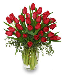 CHERRY RED TULIPS Bouquet
