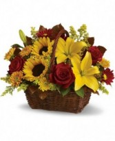 Golden Sunny Day Warmth Flowers
