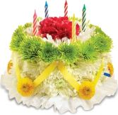 GREEN & YELLOW FLOWER CAKE in Clarksburg, MD | GENE'S FLORIST & GIFT BASKETS