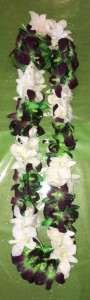 Green/Purple & White Double Orchid Lei
