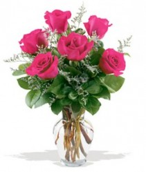 Half Dozen Roses Select Colors