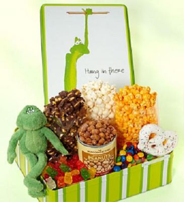 Hang In There Deluxe Sampler Gift Box