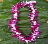 Hawiian Lei -Purple Local delivery/pickup only