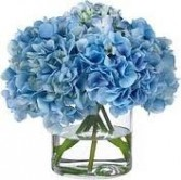 NB 6-Hydrangea in a vase (Also available in other colors)
