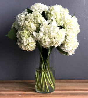 Hydrangea Obsession   in Teaneck, NJ | TEANECK FLOWER SHOP (A.A.A.A.A.)