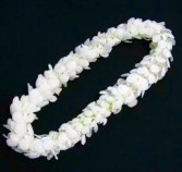It's About Time!  Graduation Lei