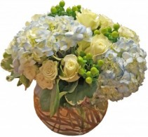 Lacy Blue and White Cut Flowers