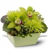 BS 2-Mixed flowers in a compact arrangement (Flowers and colors may vary)