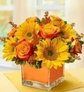 SE 6-Mixed flowers in a compact vase arrangement Flowers and colors may vary