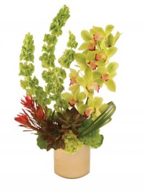 Modern Green Arrangement in Norwalk, CA | NORWALK FLORIST