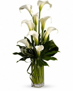 My Fair Lady Calla Lily Bouquet