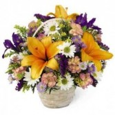 Natural Wonders Bouquet C12-3434 in Edmonton, AB | JANICE'S GROWER DIRECT