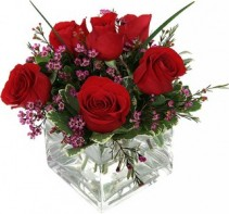 Six Red Roses with filler in a cube vase or  another vase if not available.