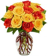 Buy 1 Dz Yellow or Orange Roses and Get 1 Dz. Free Hot Summer Special on Seasonal  Bi Color Yellow and Orange Roses!