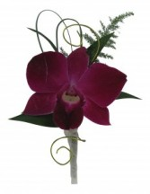 Orchid  B32-17 Boutonniere