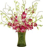 ORCHID EMBRACE ARRANGEMENT in Bethesda, MD | ARIEL FLORIST & GIFT BASKETS