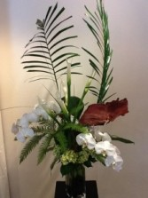 Phaleonopsis Orchids with Tropical Foliage Contemporary Arrangement