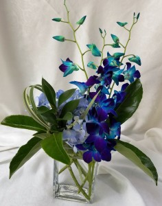 Orchids of Miralago Vase
