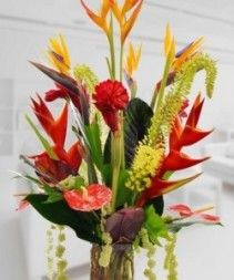 PASSIONATELY YOURS EXOTIC TROPICAL FLORALS ARTISTICALLY ARRANGED IN VASE   FLORAL (EX: BIRDS OF PARADISE, GINGER, ORCHIDS, PIN CUSHIONS,TROPICAL FOLIAGE , ETC…