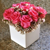 Play Time Cube Rose