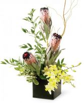 PROTEAS AND ORCHIDS in Edison, NJ | E&E FLOWERS AND GIFTS