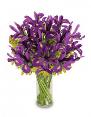 Purple Heart Iris Vase in Hobbs, NM | 1st Flowers & Gifts