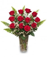 RAVISHING DOZEN Rose Arrangement in Zachary, LA | FLOWER POT FLORIST