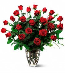 Ravishing Red 2 Dozen Red Roses