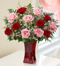Red and Pink Dozen Roses Valentine's Day