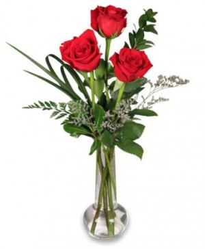 Red Rose Bud Vase Flower Design in Sutton, MA | POSIES 'N PRESENTS