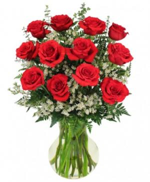 Red Roses and Wispy White Accent Flowers  in Canon City, CO |