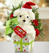 Santa Paws Keepsake container
