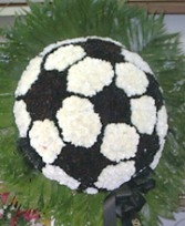 Soccer Ball Spray