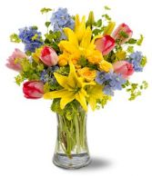 SPRING DELIGHT in Edison, NJ | E&E FLOWERS AND GIFTS